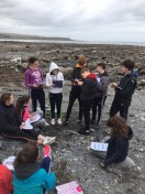 Second Year Coastal Fieldwork - March 2017